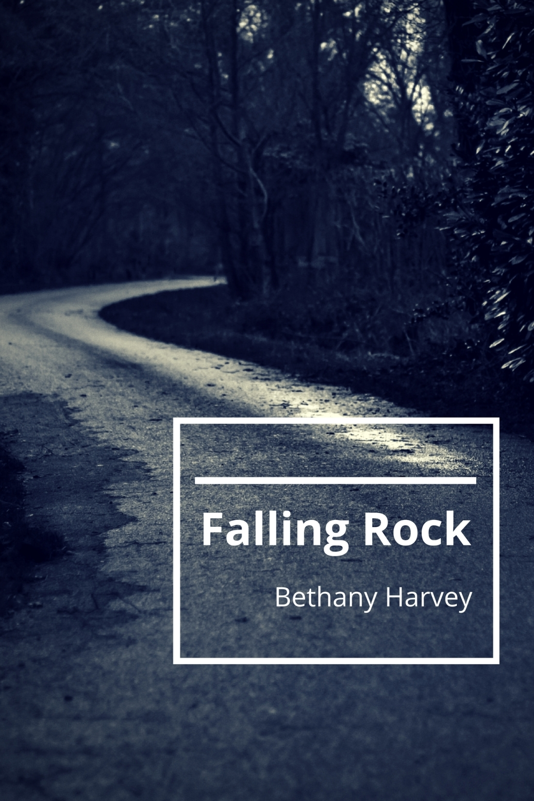 Falling Rock book cover