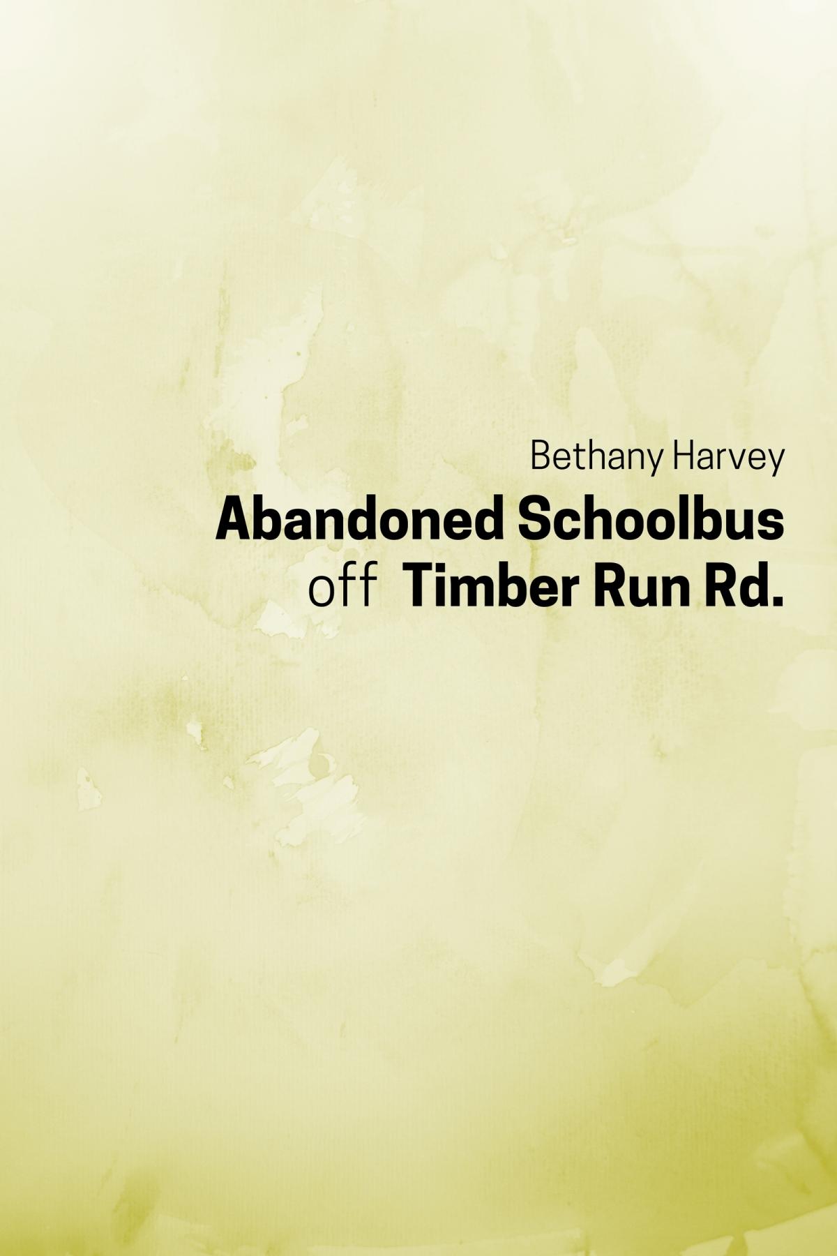 Abandoned Schoolbus off Timber RunRd.